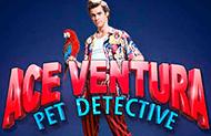 Аппараты онлайн на деньги Ace Ventura
