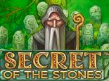 Secret Of The Stones – азартная онлайн-модель от компании NetEnt